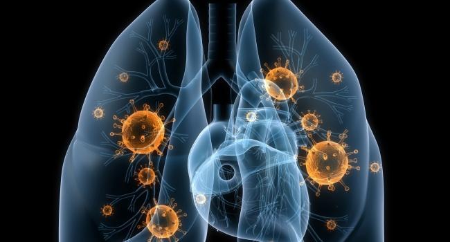Изменив стандартный режим приема антибиотиков, продолжительность лечения туберкулеза можно значительно сократить, что не только сделает лечение более эффективным, но и поможет в борьбе с распространением антибиотикоустойчивости.