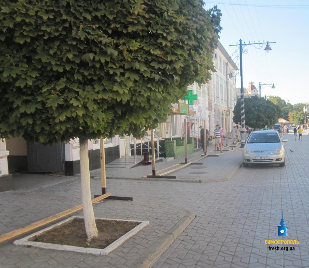 Лукашев клянется сохранить деревья вцентре Симферополя