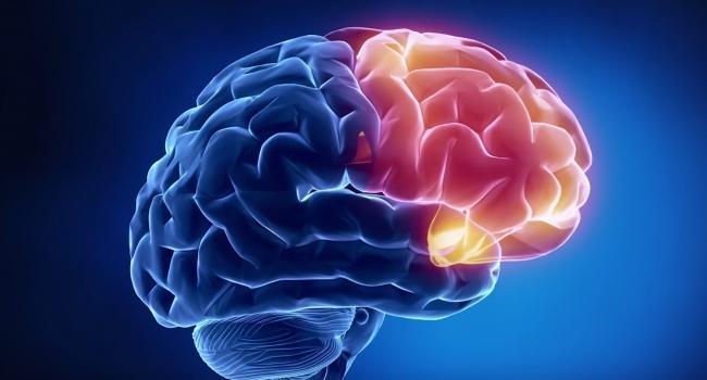 Учёные нашли способ сохранить нервные клетки у пациентов с...