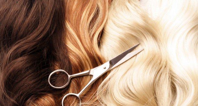Учёные нашли способ защитить волосы во время химиотерапии