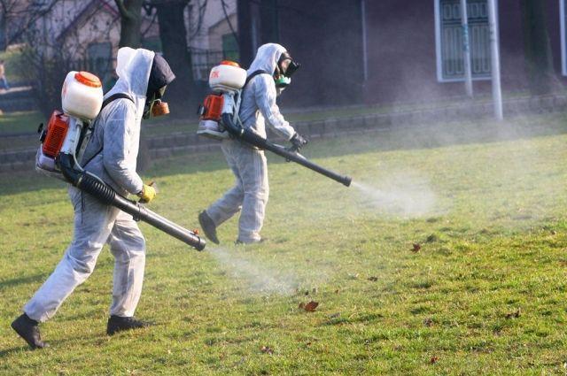 Роспотребнадзор обратил внимание местных властей на необходимость проведения в Феодосийском округе комплекса истребительных мероприятий по уничтожению клещей.