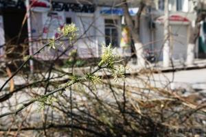 Благоустройство на улице Куйбышева