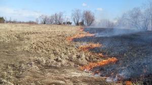 Под Орджоникидзе вчера был степной пожар