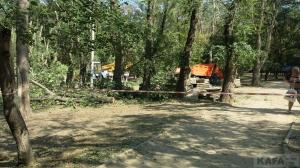 В Комсомольском парке обрезают деревья